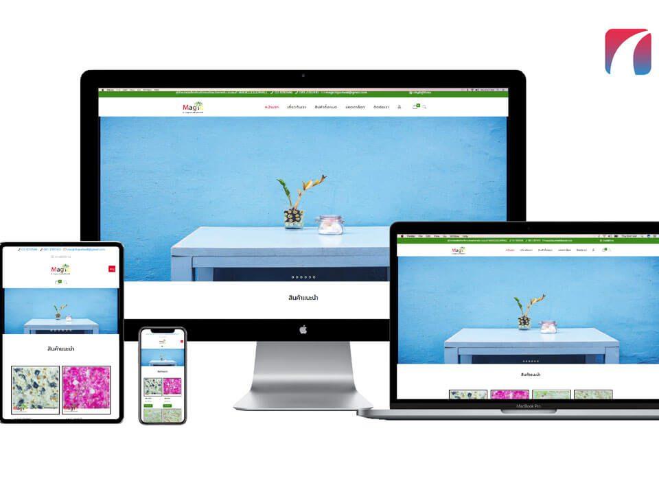 ตัวอย่างผลงานเว็บไซต์ขายสินค้าออนไลน์